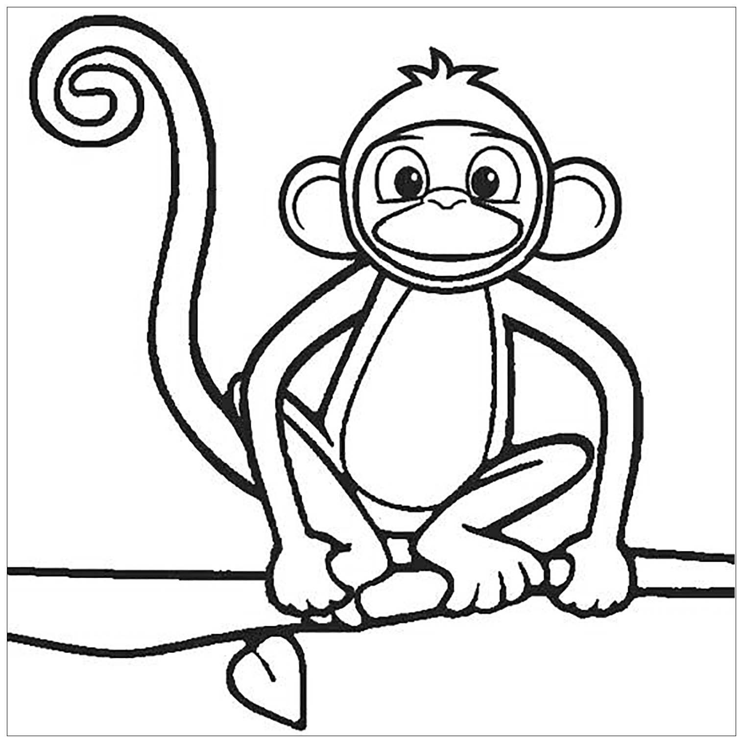 Tranh tô màu con khỉ ngồi trên cành