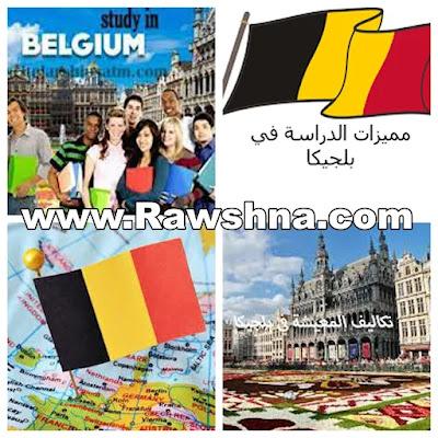 الدراسة في بلجيكا   كل ما تود معرفته عن التقدم للدراسة بلجيكا