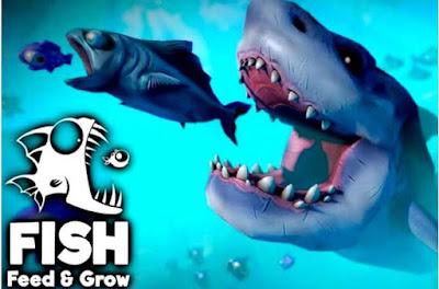 feed and grow fish