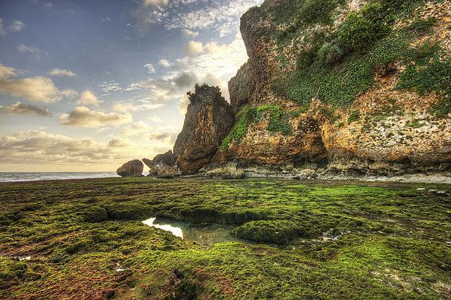 pantai gunung kidul, pantai wonosari, pantai pasir putih yogyakarta