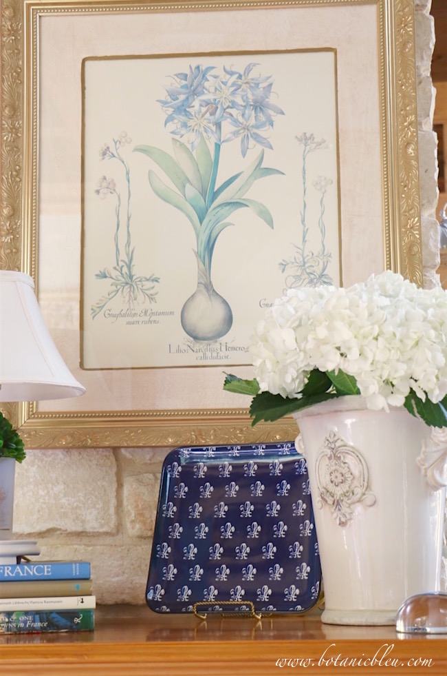 white-hydrangeas-in-white-french-design-flower-pot-with-white-fleur-de-lis