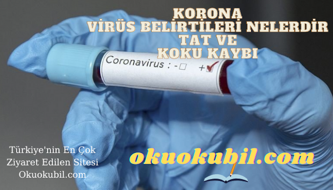 Koronavirüs Belirtileri Nelerdir, Tat Ve Koku Kaybı Kaçıncı gün Ortaya Çıkar?