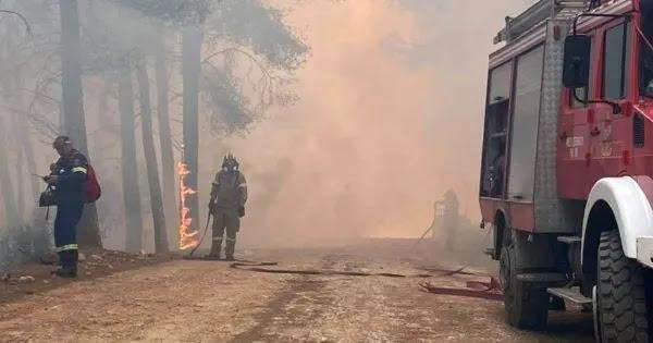 Καταγγελία πυροσβέστη καταρρίπτει την κυβερνητική εκδοχή: «Κανένας 90χρονος δεν έβαλε φωτιά στα Γεράνεια Όρη»!
