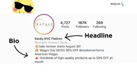 How to Get additional Followers on Instagram: 6 techniques for Instagram Growth