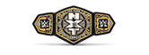 silver wwe nxt tag team title championship