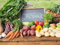 7 Manfaat Dari Sayur Organik