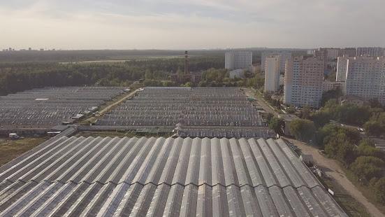 Арендаторы об удобном месторасположении агрофирмы «Подмосковное»