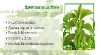 http://steviaven.blogspot.com/2016/04/uso-de-la-stevia-contra-la-obesidad.html