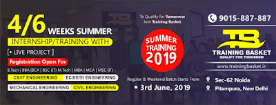 summer training institute in noida/delhi