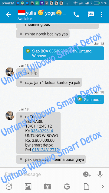 Harga Smart Detox Synergy