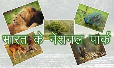 bharat ke rastri udhyan, national park of india, indias best national park, top 10 nationl park in india