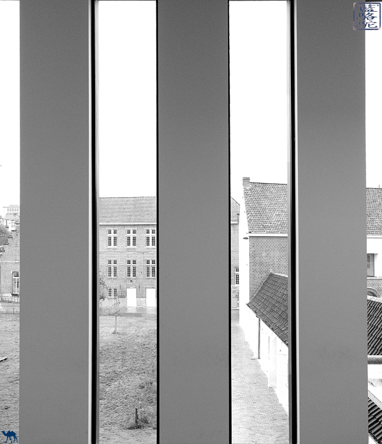 Le Chameau Bleu - Blog Voyage Gand Belgique - Vitre du STAM museum  - Belgium Gent Gand Flandres