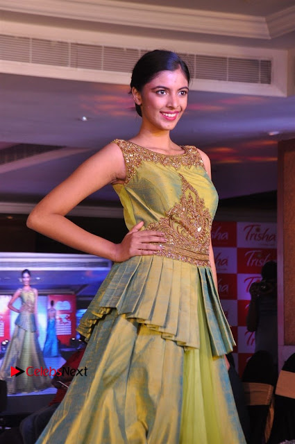 South Indian Celebrities Pos at Love For Handloom Collection Fashion Show  0004.jpg