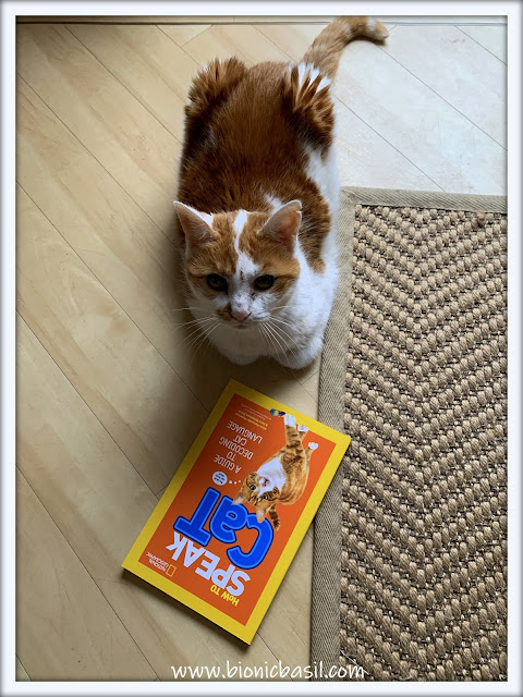Book Reviews with Amber #165 ©BionicBasil® How To Speak Cat,  A Guide to Decoding Cat Language Amber's Purrsonal Copy