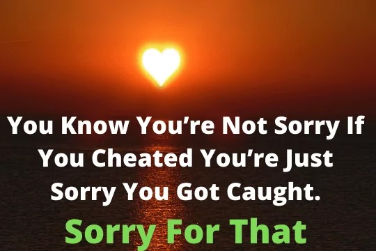 With a broken heart and a zero ego, a sad soul and a head down. I apologize dearly, I am truly sorry. I love you