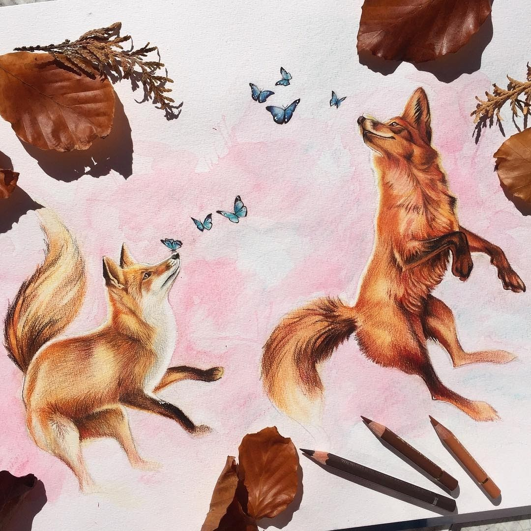 14-Fox-Play-Liam-James-Cross-Wild-Animals-Drawings-and-Paintings-www-designstack-co