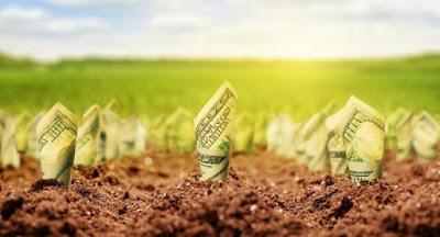 Зеленский поручил отменить мораторий на продажу земли до 1 декабря