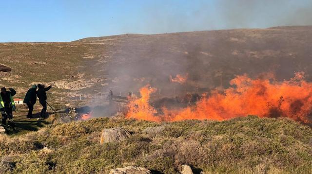 Λέσβος: Φωτιά στο Απολιθωμένο Δάσος στο Σιγρί