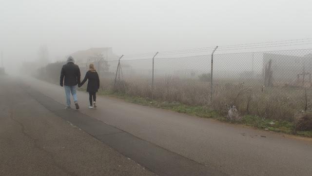 Niebla, frío, gris, invierno, humedad, estaciones, sublime, admirable,