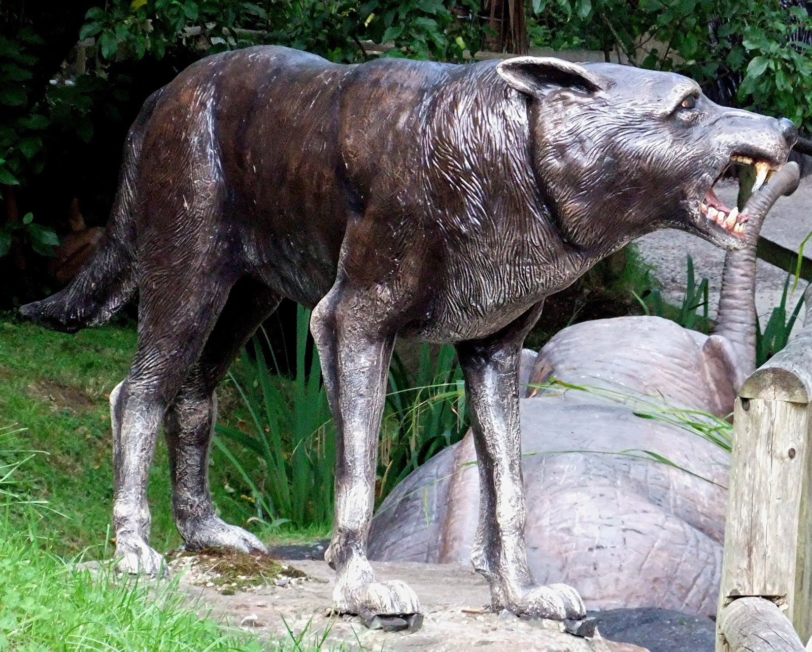 the dire wolf The dire wolf is an extinct north american species of wolf which was a great deal larger than our wolves of present day for about 100,000 years it lived.