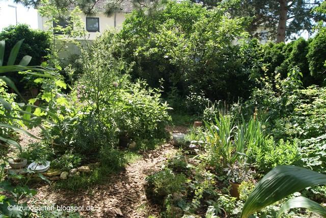 Blick in den Garten im Juni