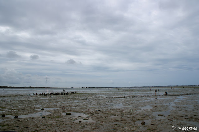 I lati del Passage du Gois con la bassa marea