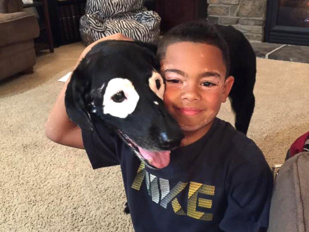 Niño con vitíligo sale de su depresión al conocer a un perro con su misma  enfermedad - Oxitocina Magazine- Revista de mascotas en Panamá