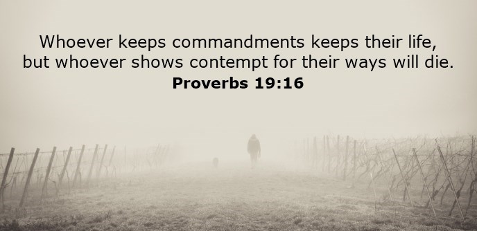 Whoever keeps commandments keeps their life, but whoever shows contempt for their ways will die.