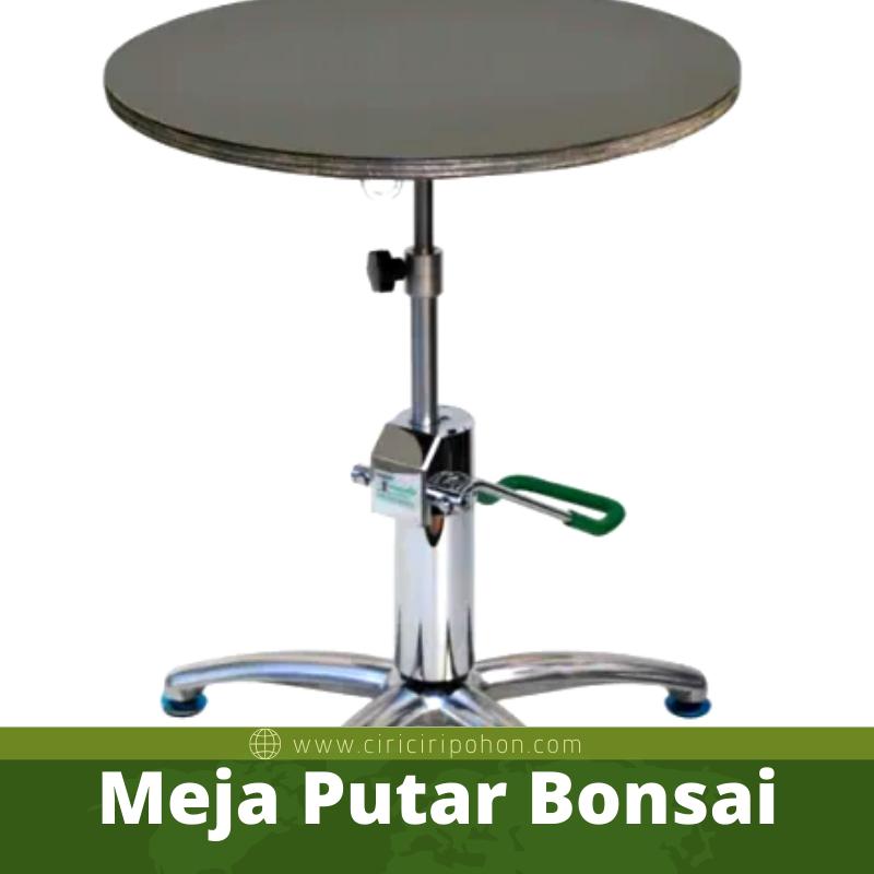 Meja Putar Bonsai