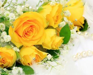 Las últimas flores rumbo al hospital