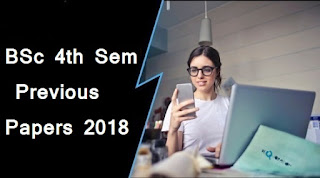 BSc 4th Sem Previous Year Question Papers 2018 Mdu(Maharshi Dayanand University)