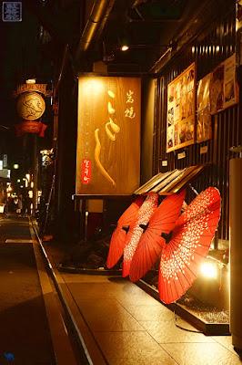 Le Chameau Bleu - Photos de notre voyage au Japon