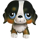 Littlest Pet Shop Portable Pets Berner Senner (#145) Pet