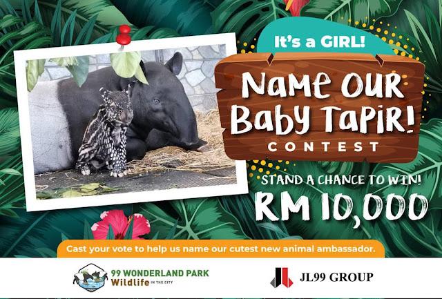 Hadiah RM10,000 Menanti Pemenang Bagi Yang Berjaya Namakan Anak Tapir