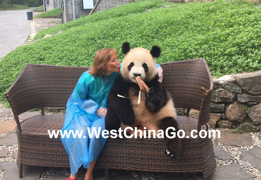 chengdu panda tour package