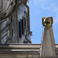 Pictures of Ireland: gargoyle at St. Fin Barre's Cathedral