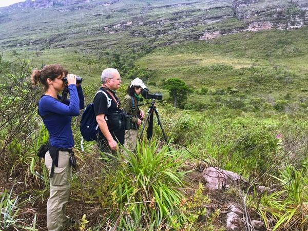 O Parque Nacional da Chapada Diamantina atrai observadores de pássaros (Foto: Ciro Albano)