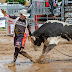 ABOUT COORS PRO X-TREME BULL FREESTYLE