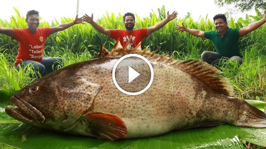 Unseen Biggest Fish BBQ Recipe | Big Tandoori Fish Recipe | Giant Fish Barbecue | Goliath Grouper
