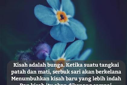 50+ Quotes Tentang Bunga yang Indah dan Romantis