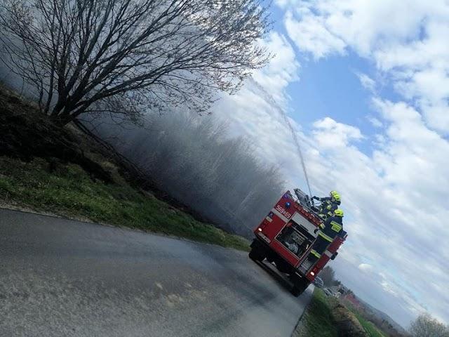 Widacz - Pożar traw, strażacy w akcji.