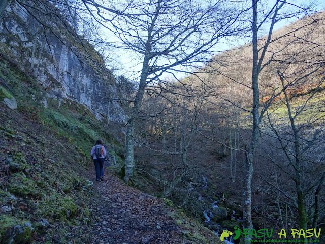 Ruta Gumial: finalizando el bosque junto al río Gumial