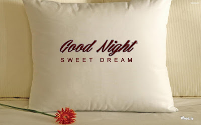 100 Good Night Wishes Messages Status in Hindi   Good Night Quotes