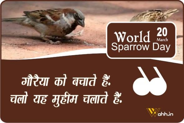 Best  World Sparrow Day Wishes
