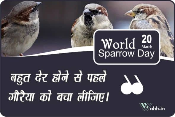 World Sparrow Day Quotes Wishes In Hindi With Images