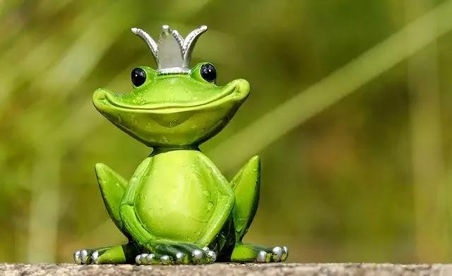 Frog aur ox ki hindi story