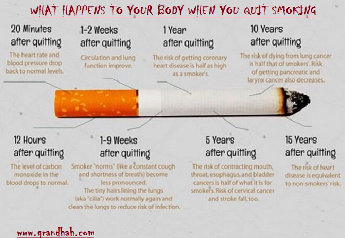 WHAT HAPPENS TO YOUR BODY WHEN YOU QUIT SMOKING