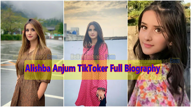 Alishba Anjum Wiki, Age, Husband, Boyfriend, Family, Marriage, Children & Biography