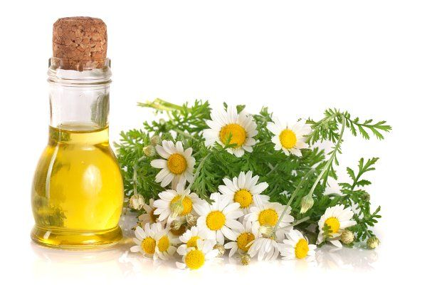 Natural Ways to Cure Variety of Conditions with Chamomile Oil