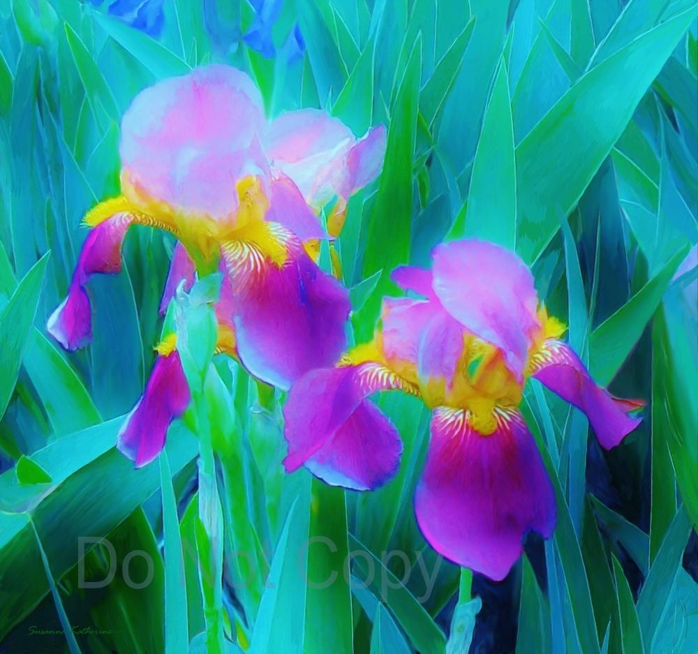 Paintings of artists original unusual art painting of iris flowers painting of iris flowers lavendar on blue izmirmasajfo